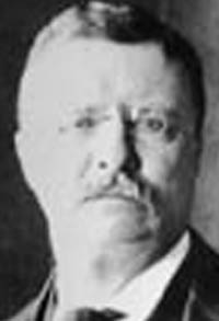 if you are writing an essay about theodore roosevelt Theodore roosevelt essay theodore roosevelt's impact on life through education the majority of historians or american citizens agrees, theodore roosevelt ranks among the top five presidents of the united states.