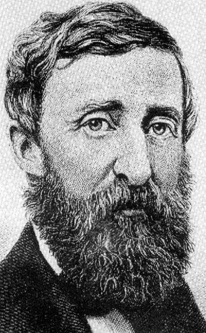 henry dvid thoreau biography in first Biography henry david thoreau was a complex man of many talents who worked hard to shape his craft and his life, seeing little difference between them.