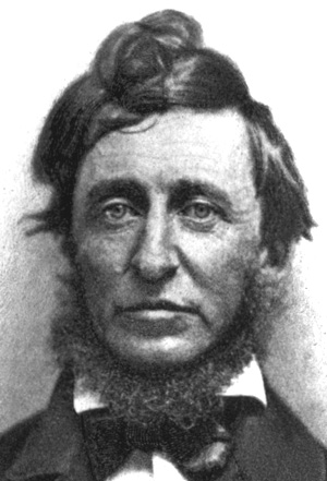 walden thoreau essay Walden essay - download as word doc (doc / docx), pdf file (pdf), text file (txt) or read online henry david thearou's biography, is hard to read when your young.